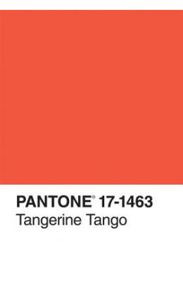 Pantone Tangerine Tango Color of the Year Journal