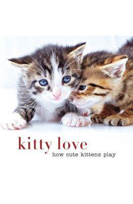 Kitty Love: How Cute Kittens Play