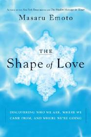 Shape of Love: Discovering Who We Are, Where We Came from, and Where We're Going