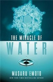 Miracle Of Water