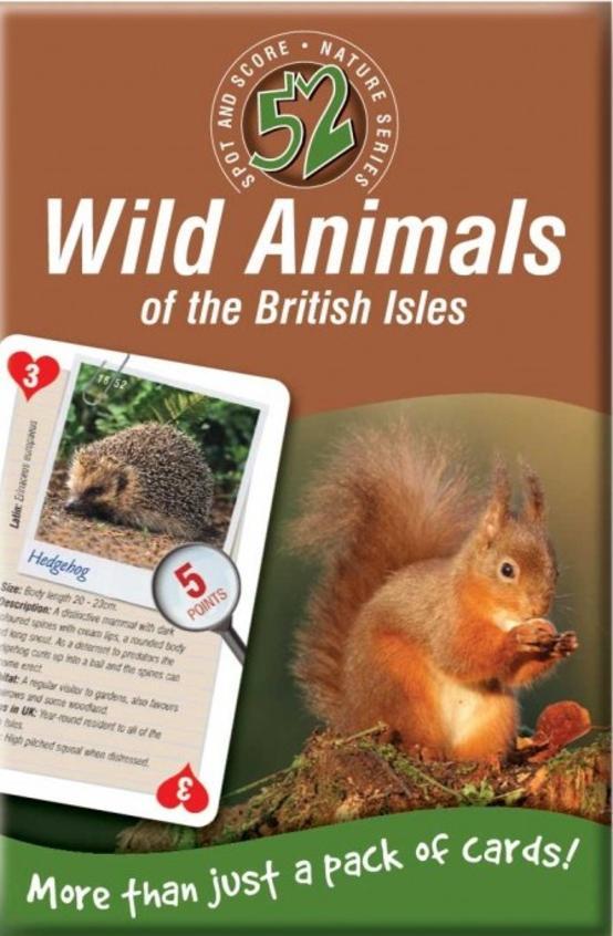 52 Wild Animals