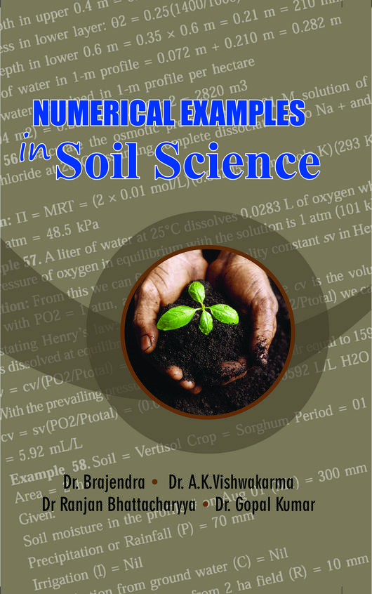Numerical Examples In Soil Science